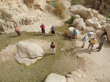 Friends exploring the streams at En Gedi.